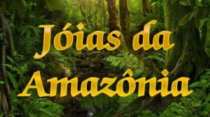 brincos confeccionados por tribos da Amazônia