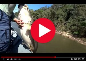 Revista Pesca Esportiva